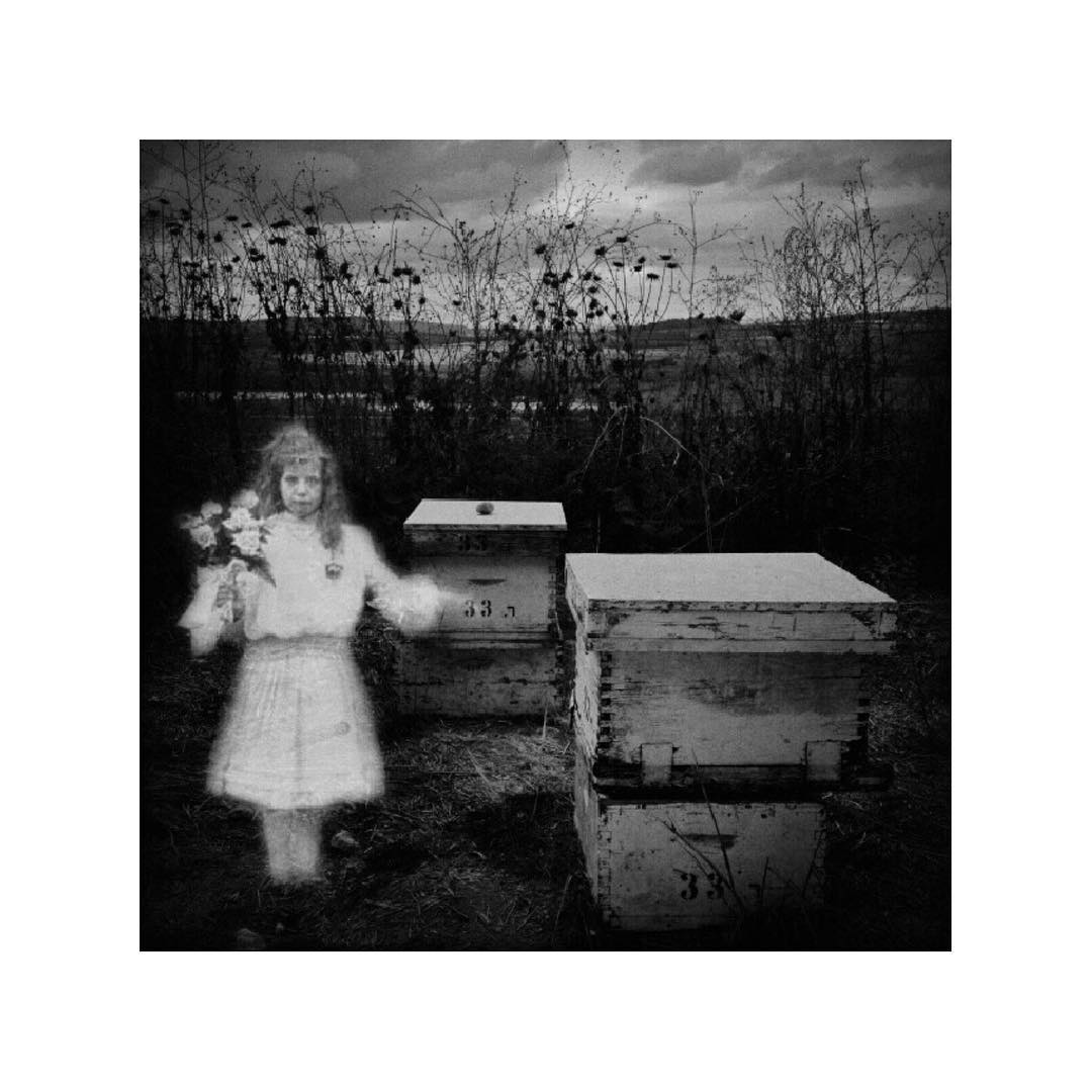 "The Bee Keeper's daughter (In Spirit). Repost from September 2013 for the ""They're here, Amongst us"" series."