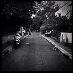 I love my street....