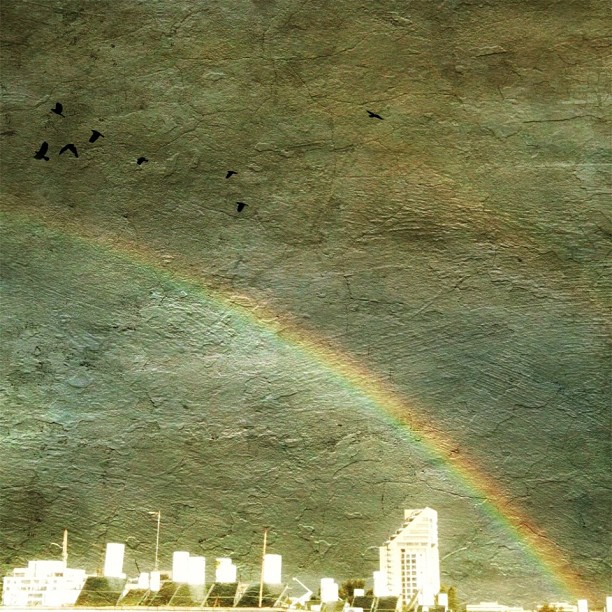 The first thing I saw after opening the curtains was this glorious Rainbow! Five minutes later it was gone ☀