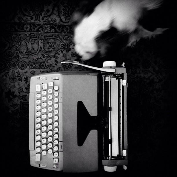 The Typewriter Series - Part IV - Relationship