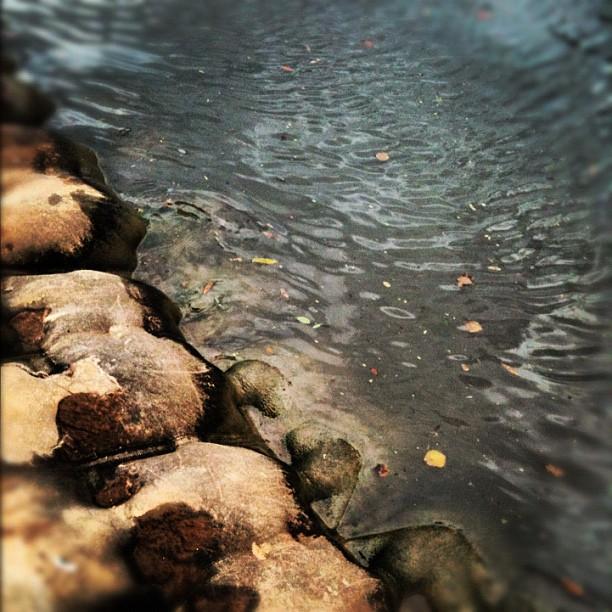 נהר גועש