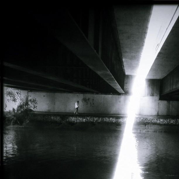 The Light Trap