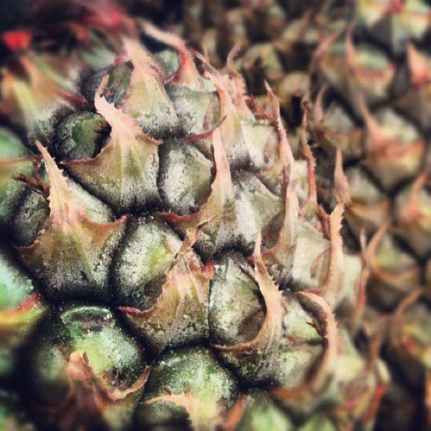The Market series - Pineapple