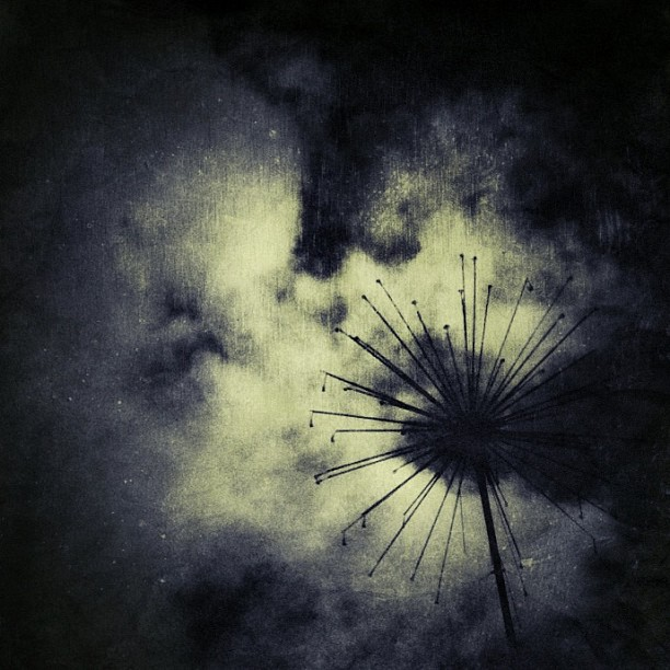 Industrial Flower