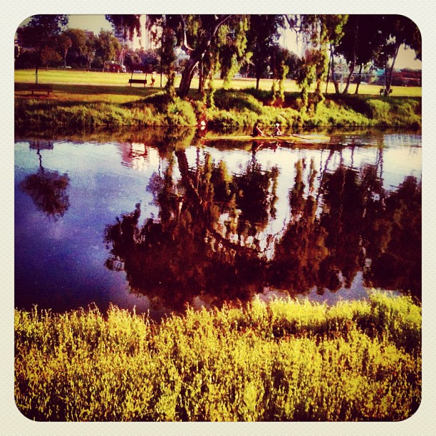 Reflections. It's been a while since I've been to the park near my home. Happy to see it's still there in its beauty...