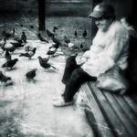 Pigeoness...