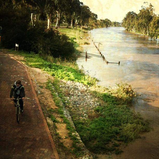 Hayarkon river at its (almost) full capacity. What an inspirational sight!